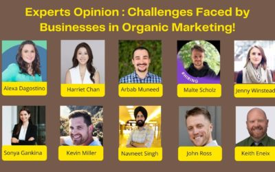 A Business Owners' Guide to Astounding Outcomes with Organic Marketing!